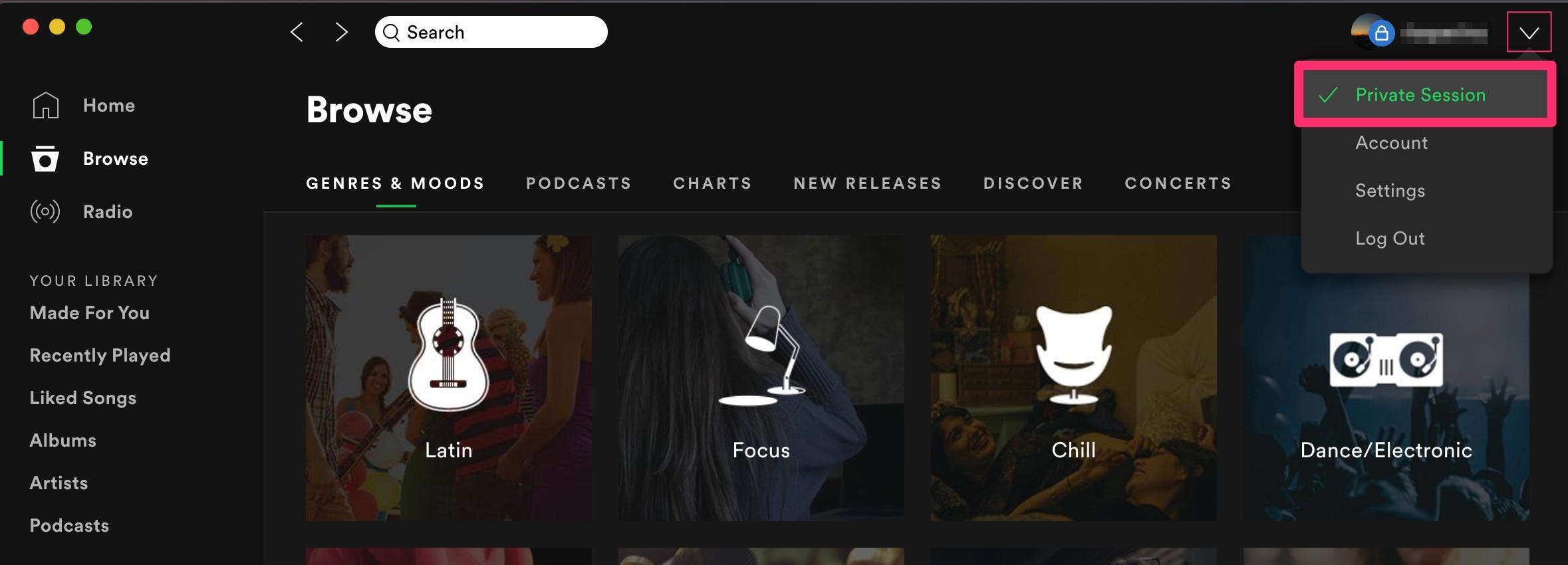 What is private session on Spotify